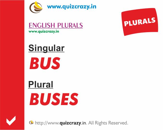 Plural of bus