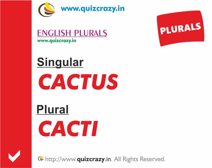 Plural of cactus