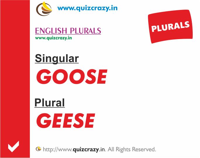 Plural of goose