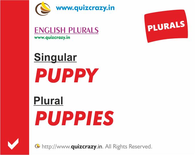 Plural of puppy