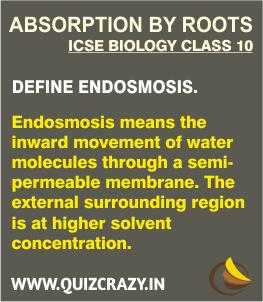 Define Endosmosis