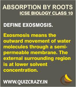Define Exosmosis