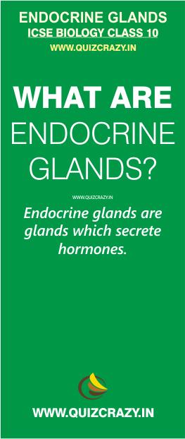 Define Endocrine glands
