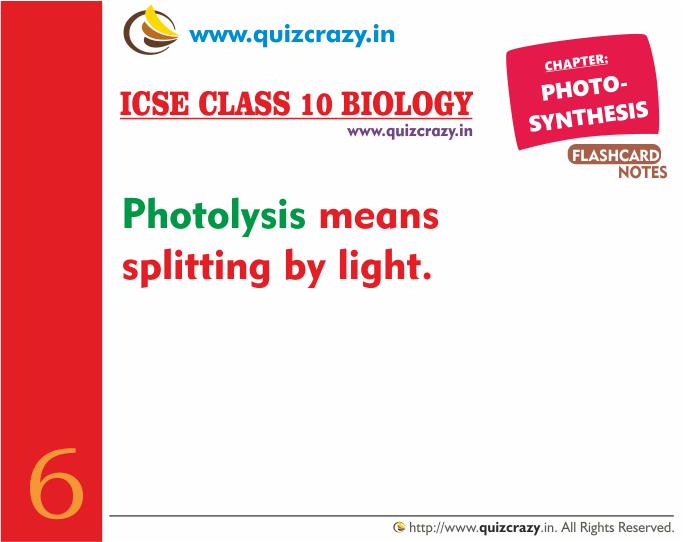 Define Photolysis