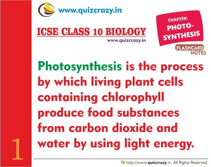 Define Photosynthesis