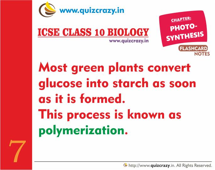 Define Polymerization