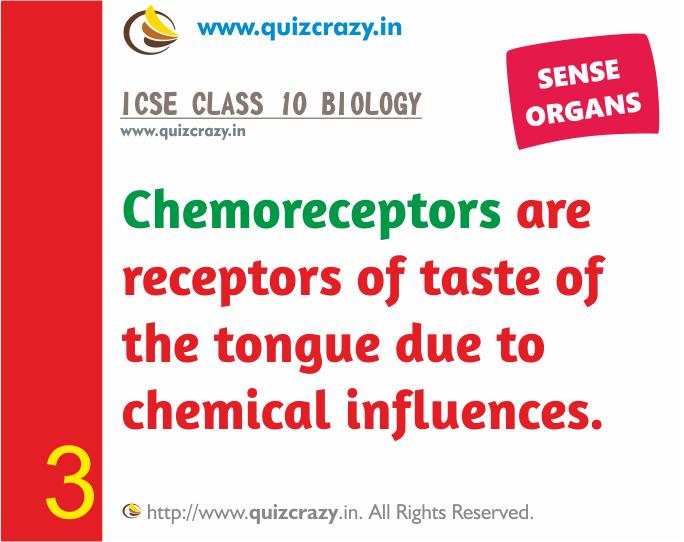 Define Chemoreceptors