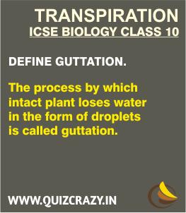 Define Guttation
